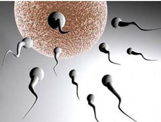 740996 Nguyên nhân vô sinh ở nam giới