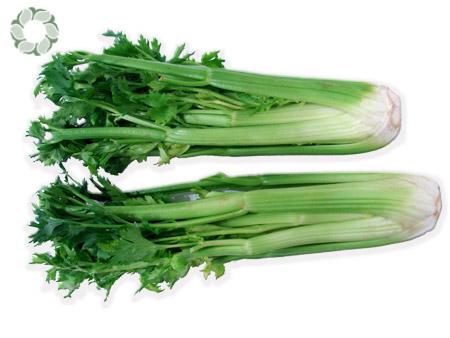 fniq3hi6rausach celery 1  9 loại thực phẩm có tác dụng chống sưng đau khớp